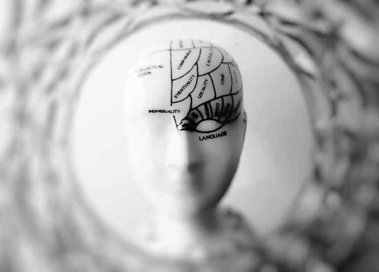 Des neurones spécifiques contrôlent le comportement alimentaire