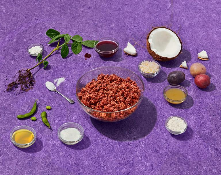 Protéines de soja et maladies cardiaques