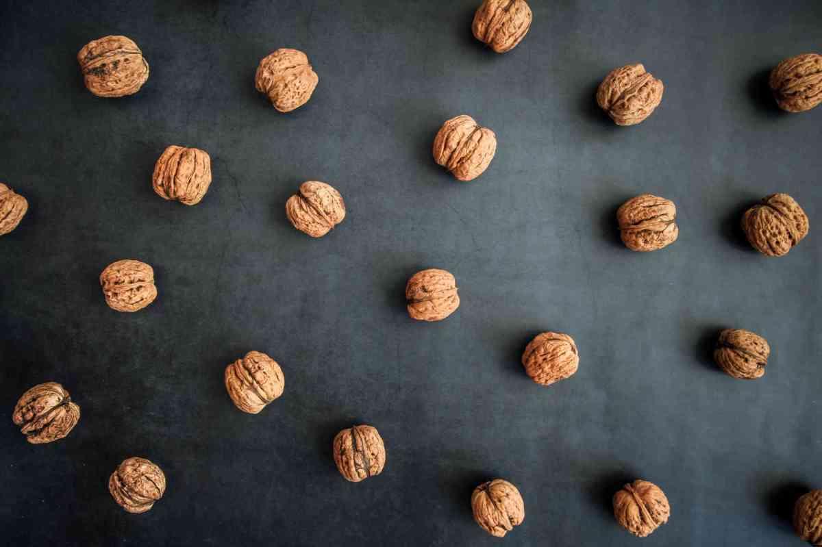 Les bienfaits des noix contre la rectocolite hémorragique
