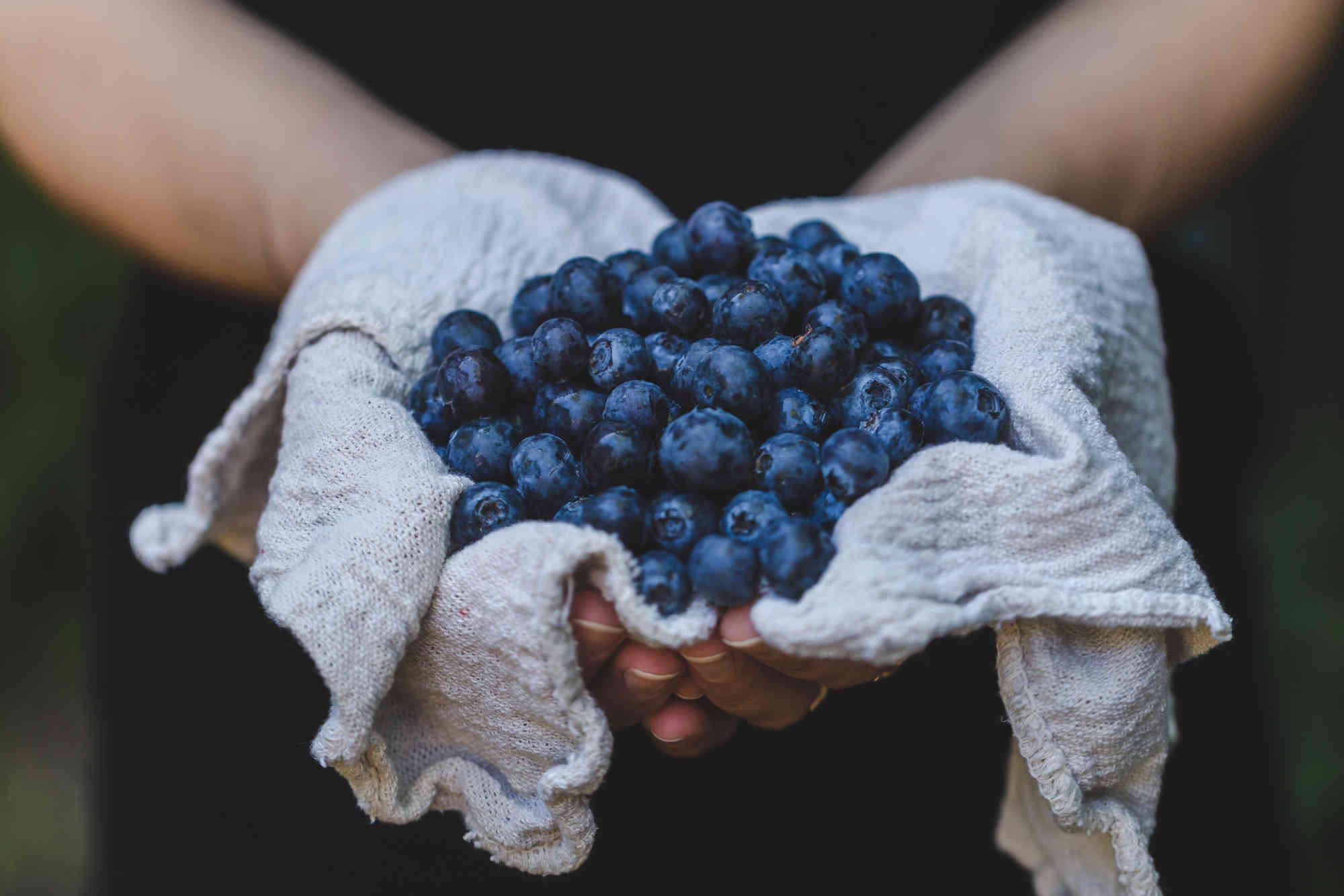 Encourager la consommation d'aliments riches en flavonoïdes