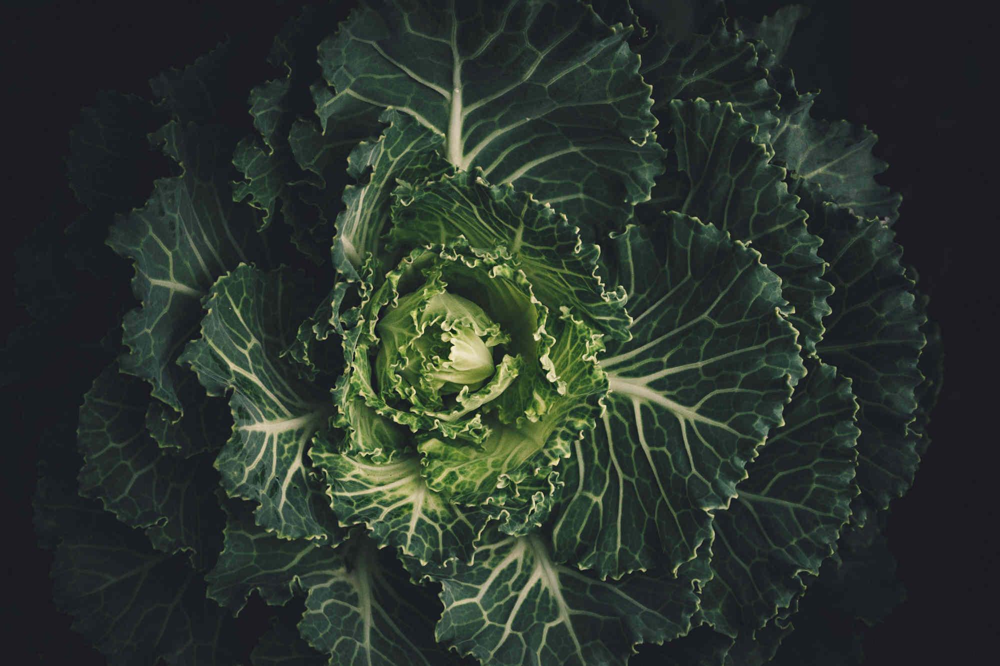 La sensibilité au goût amer influence la consommation de légumes