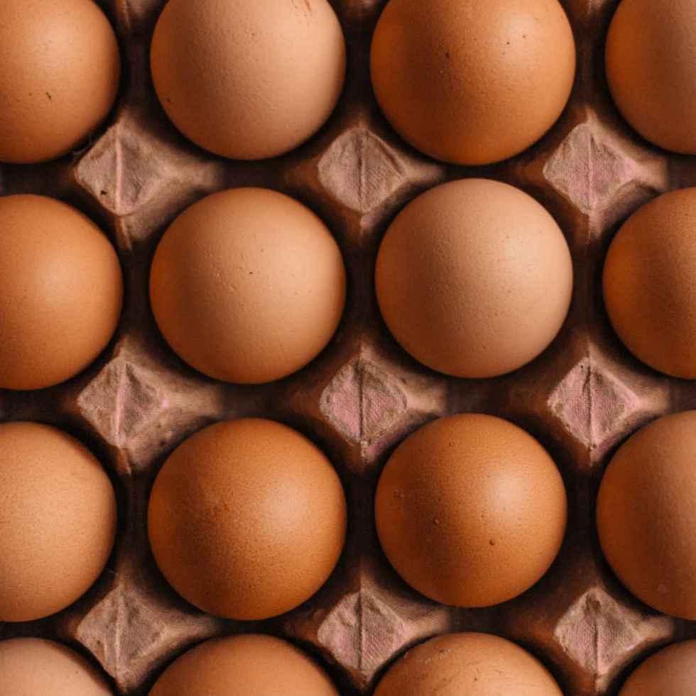 Manger un œuf par jour augmente-t-il le risque de maladie cardiaque ?